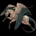 Pegasus Akhal-Teke Palomino