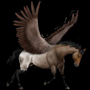Pegasus-Reitpferd Andalusier Rappe