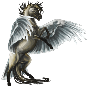 Pegaz Koń achał-tekiński Ciemnogniada