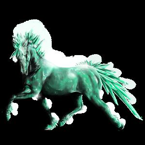 Pony Australian Pony Black