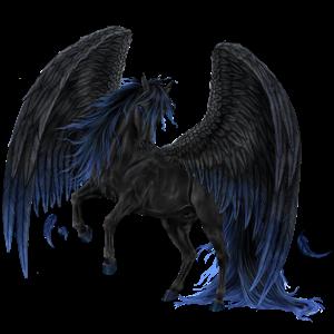 Pegaz wierzchowy Koń czystej krwi arabskiej Siwa w hreczce