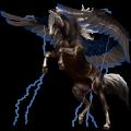 Riding pegasus Paint Horse Black Overo