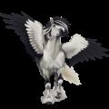 Pegaz wierzchowy Koń luzytański Siwa Jabłkowita