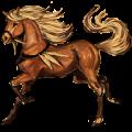Riding Horse Lusitano Palomino