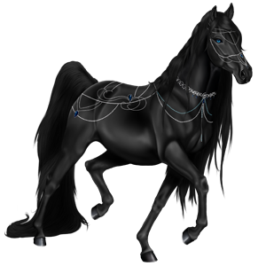 Riding Horse Friesian Black