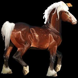 Jezdecký kůň Andaluský kůň Bělouš