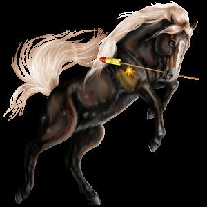 Jezdecký kůň American paint horse Černý ryzák Overo