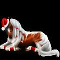 Koń wierzchowy Brudnokasztanowata