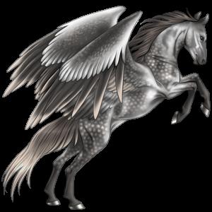 Riding pegasus Lipizzan Dapple Gray