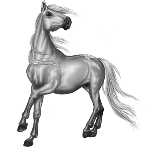 Riding Horse Tennessee Walker Light Gray