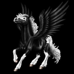 Riding pegasus Standardbred Dapple Gray