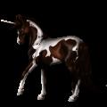 Riding unicorn Paint Horse Bay Tobiano