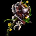Unicorn Knabstrupper Chestnut Leopard