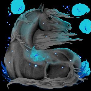 Jezdecký kůň Hannoverský kůň Bělouš