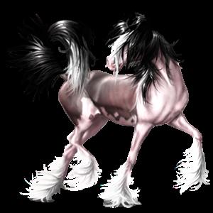 Riding Horse Mustang Black