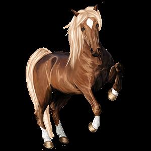 Cavalo de passeio Curly Tobiano tordilho lobuno