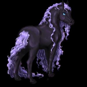 Pony Shetlandspony Skimmel
