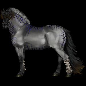 Pony-pegasus Fjord Ulsblakk