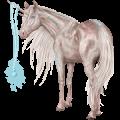 Riding unicorn Brumby Cremello