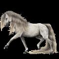 Riding Horse Hanoverian Dun