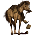 Pony Connemara Lever kastanje