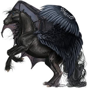 Pégaso Paint Horse Tovero preto