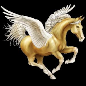 Riding pegasus Akhal-Teke Palomino