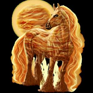 Cheval de selle Lusitanien Palomino