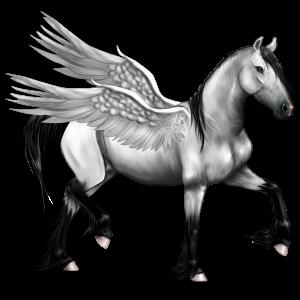 Riding pegasus Purebred Spanish Horse Dapple Grey
