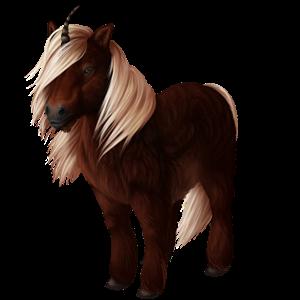 Unicorn pony Shetland Liver chestnut