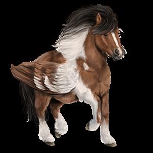Pegasus-ponny Shetlandsponny Fux tobiano