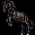 Pony Welsh Roodbruin