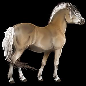 Pony-pegasus Fjord Gulblakk