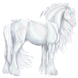 Cavalo de passeio Quarto de Milha Preto