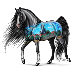 Pony Kerry Bog Zwart
