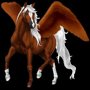 Jezdecký pegas Francouzský klusák Černý hnědák