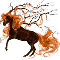 Unicorn Knabstrupper Black Leopard