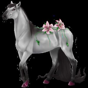 Пони Уэльский Светло-серый