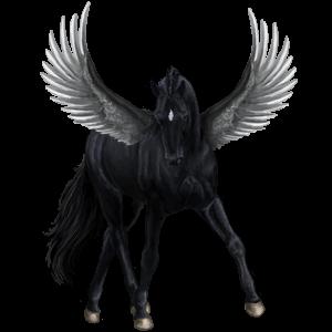 Pegasus Engelskt fullblod Gulvit