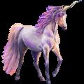 Riding unicorn Nokota Dark bay Overo