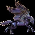 Pegasus Knabstruper Svart leopard