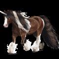 Riding unicorn Gypsy Vanner Bay Tobiano