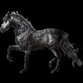 Jahalni konj Arabec Pikasto siva