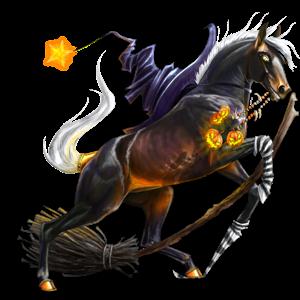 Pony Connemara Black