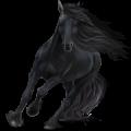 Pegasus Arabian Horse Chestnut