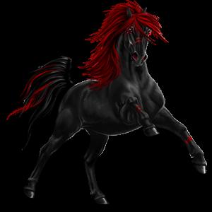 Jezdecký pegas Argentinský kreolský kůň Černý hnědák