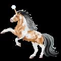 Riding unicorn Nokota Dark Bay