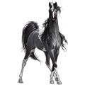 Unicorn pony Dapple Gray