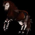 Riding Horse Selle Français Dark Bay