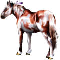 Riding Horse Light Gray